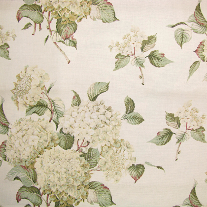 Hortensia Cotton